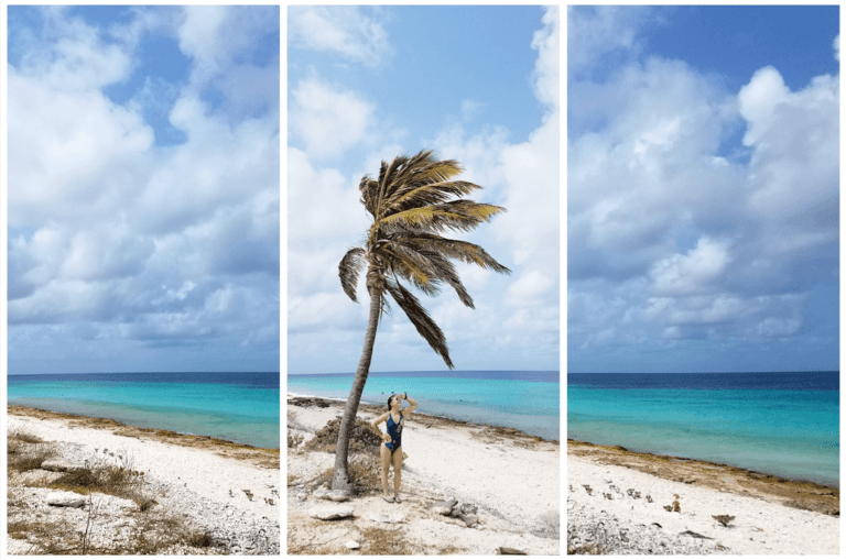 Bonaire Travel Guide - Travel Blog - Fearless Captivations