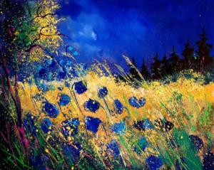 blue-poppies-459070-pol-ledent