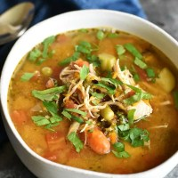 Instant Pot Vegetable Soup with Shredded Chicken