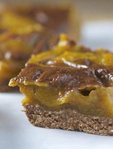 Pumpkin Chocolate Swirl Squares
