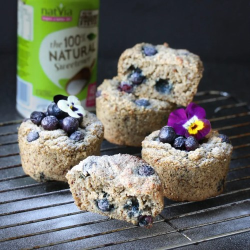 Blueberry Vanilla Oat Bran Muffins - Healthy Eating Jo