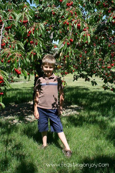 Corbin by the Cherry Tree