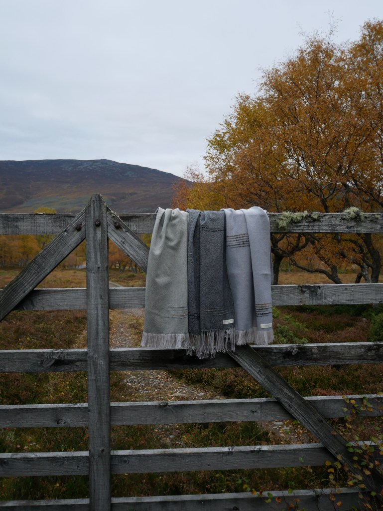 Three scarves hanging over a rustic wooden gate , there is a track leading to a Scottish Munro behind.
