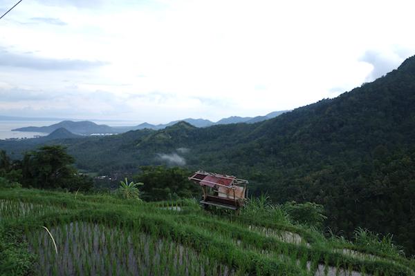 Satay Country
