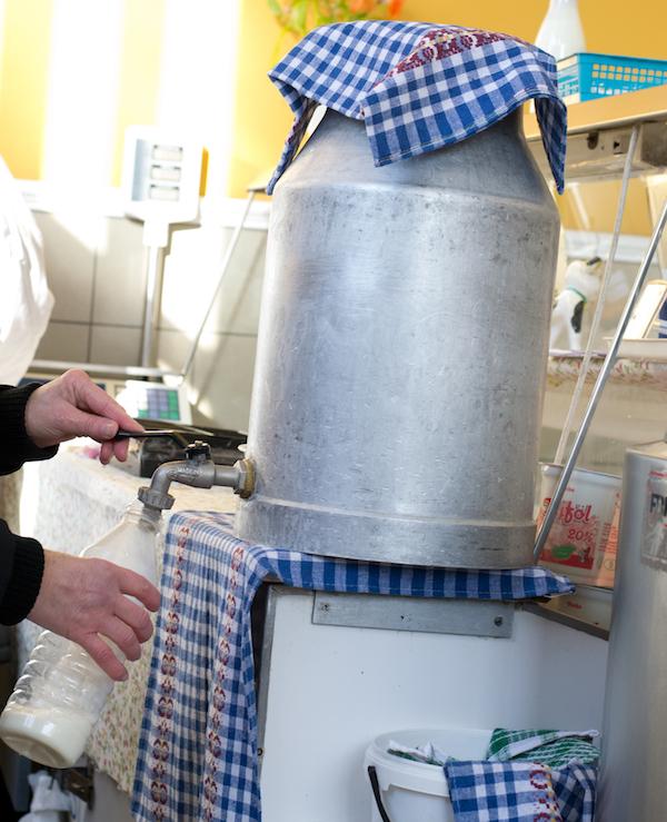 Budapest - Food Tour Raw Milk