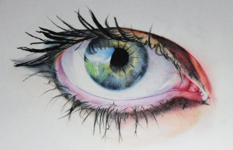 Amy Pintura Robins 4