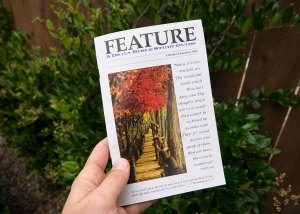 Feature Bible Study Guide