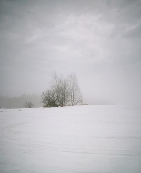 alexi_hobbs_photography