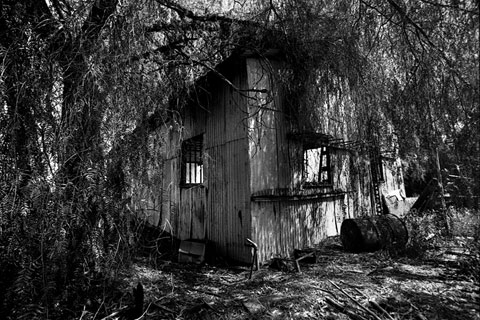 ChristieHemm_Photography
