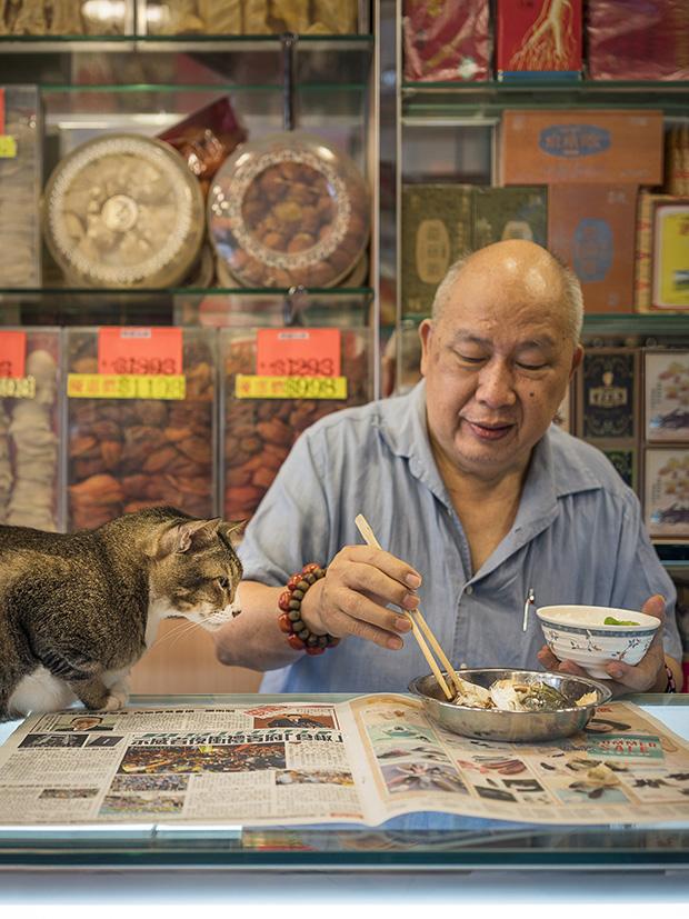 m-heijnen-hk-shop-cats-22