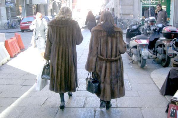 furs.jpg