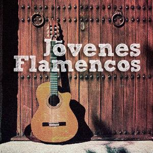 Circuito Jóvenes Flamencos 2014