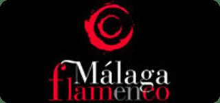 web-malaga-flamenco1