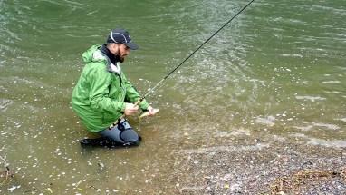 Romain capture une truite lors de son stage de pêche à la mouche