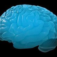 Cervello: ecco perché non vediamo i piccoli cambiamenti