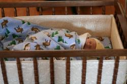 Spencer in the family cradle