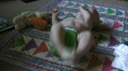 Spencer kicking