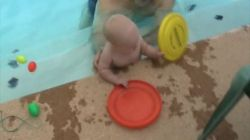 Spencer playing with frisbees in the pool