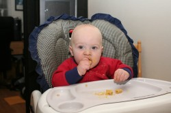 Spencer eating penne with butternut squash sauce