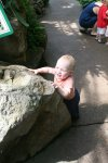 Spencer trying to climb a rock