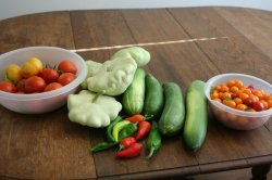 Harvest from the garden - various tomatoes, patty pan squash, hot peppers, and cucumbers