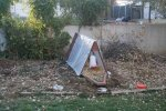 Plastic sheeting over chicken coop