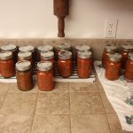 21 pints of canned salsa