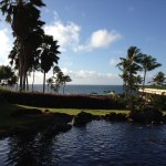 pools and ocean