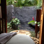 view from massage table at Anara spa