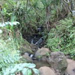 Watefall on the Kalalau trail