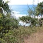 Big waves on the Napali coast