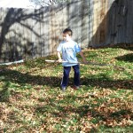 Spencer raking leaves