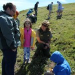 The park ranger tells us about tundra plants