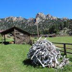 Antler pile at the Macgregor ranch