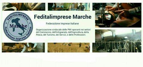 feditalimprese Marche banner