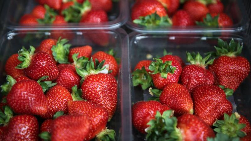 strawberries, New Zealand, australia, World News