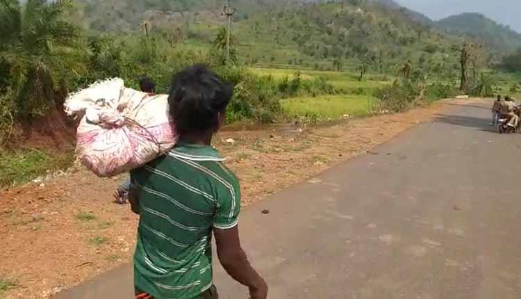 titli cyclone, odisha, Kalahandi, state News