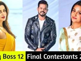 sreesanth, deepika kakar bigg boss winner, bigg boss 12 winner, bigg boss 12 finale, bigg boss 12, bigg boss News