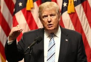 tcs, INFOSIS, HCL Tech, H1B visa, Donald Trump, Cognizant, Business news