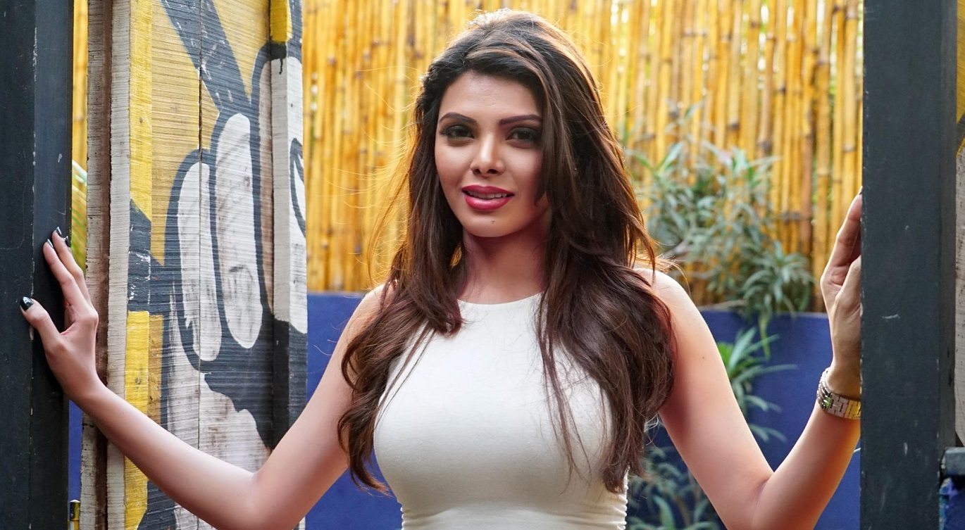 Sherlyn Chopra, Bollywood, Actress, drugs, cricketers, party