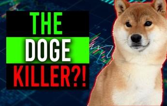 Doge Killer