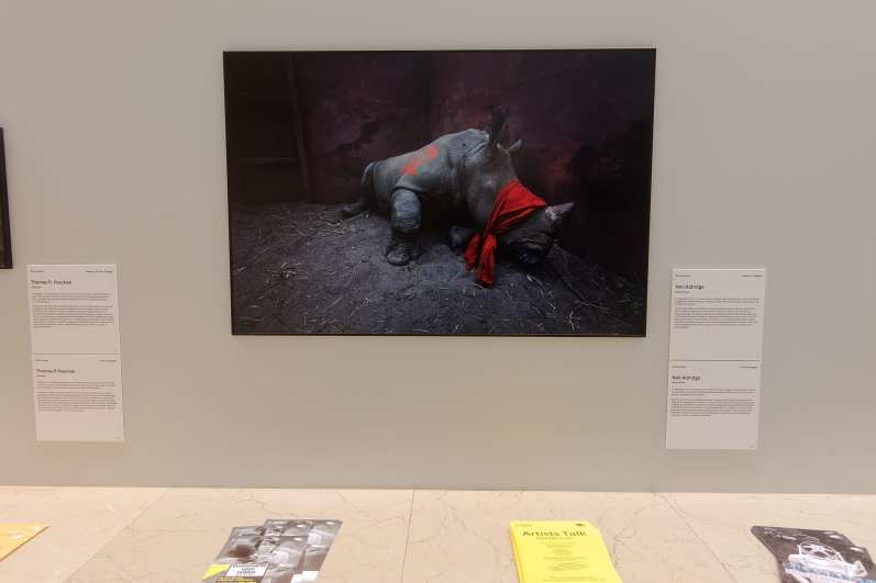World Press Photo 2018, București