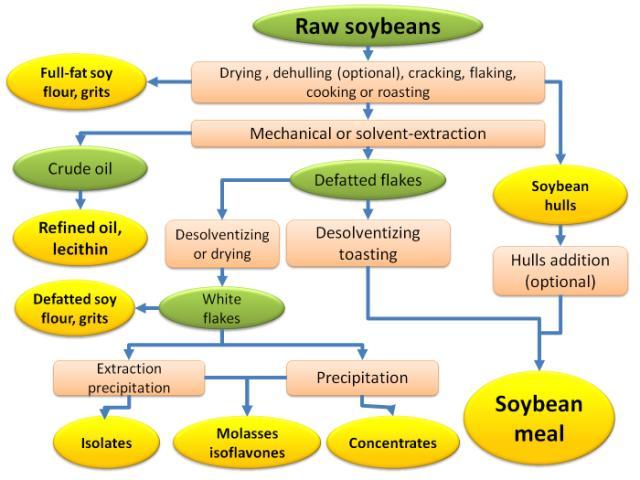 Soybean General Feedipedia