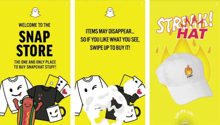snap store business model