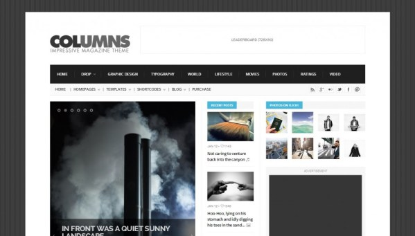 Columns wordpress theme