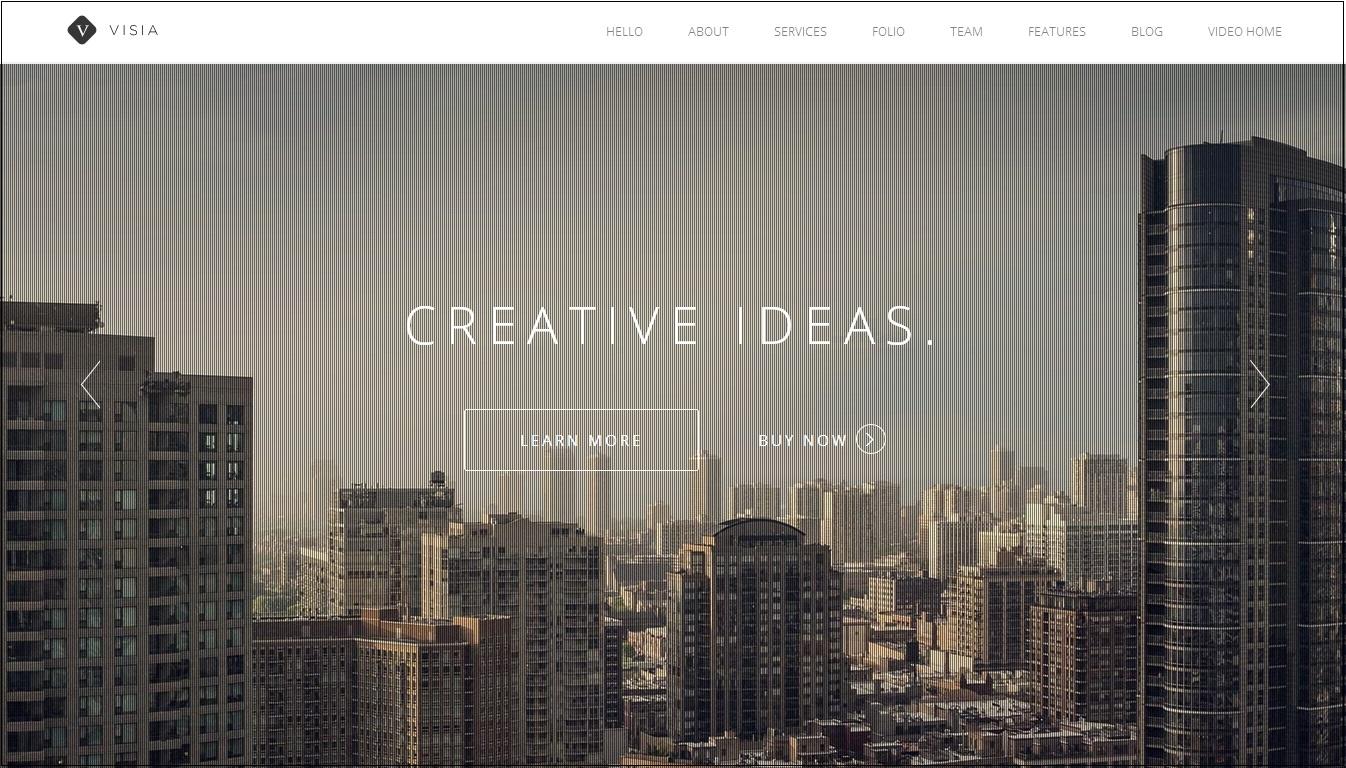 Visia WordPress Theme