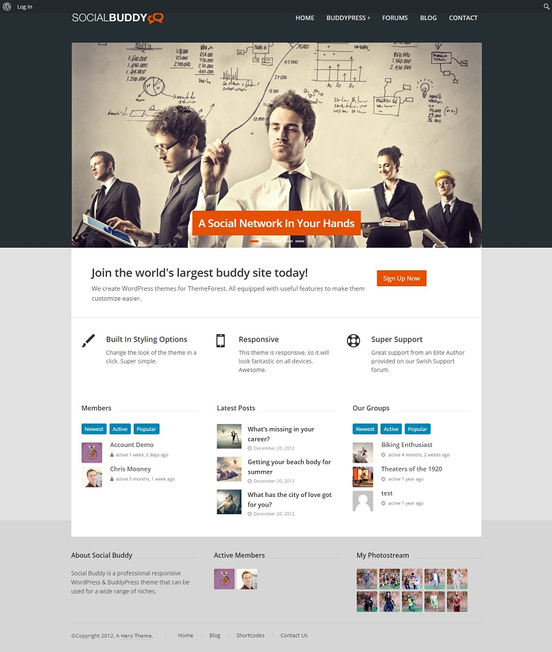 social buddy buddypress theme