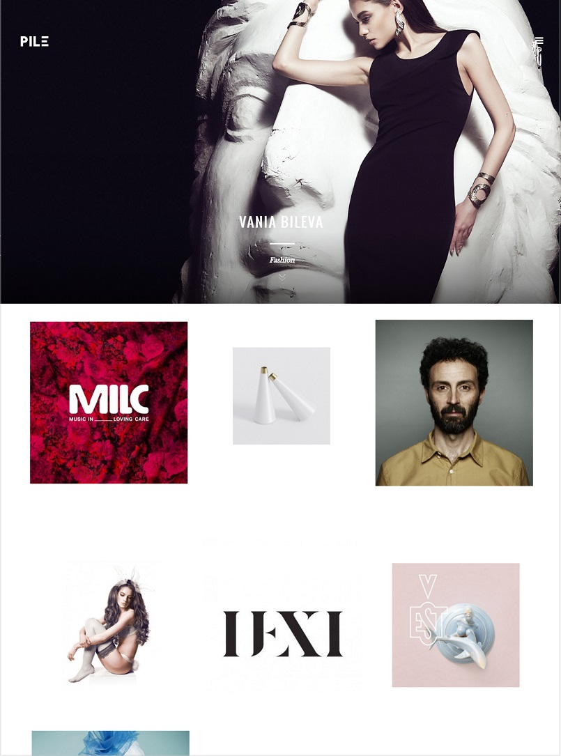 pile wordpress theme