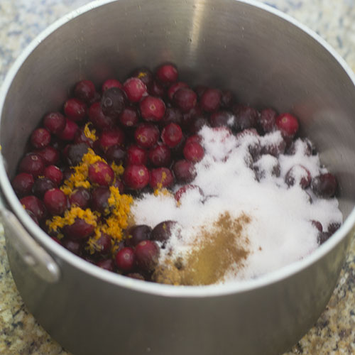 Cranberry Ingredients in Pot