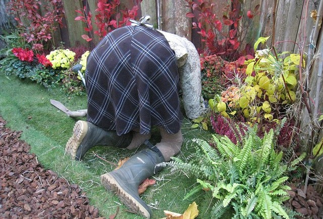 gardening low back pain warwick